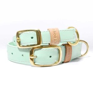 woefeltje hey dog sweet mint halsband hondenhalsband