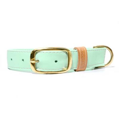 woefeltje hey dog sweet mint hondenhalsband